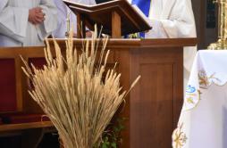 Zdjęcie: Odpust w Sieniawie (9).png