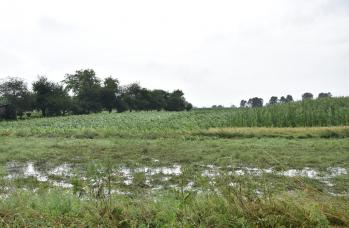 Zdjęcie: straty w rolnictwie (6).png