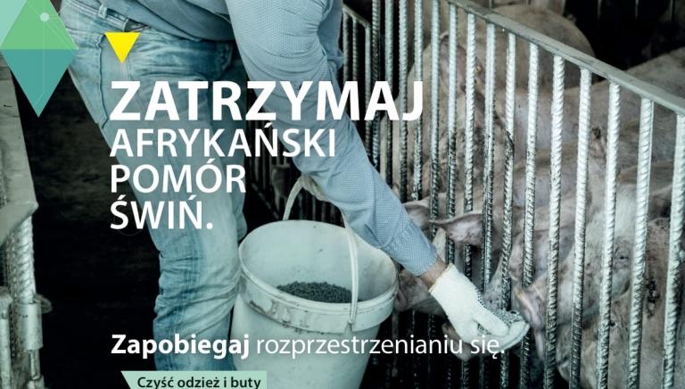 Zdjęcie główne newsa: Informacja Powiatowego Lekarza Weterynarii w Przeworsku, 25.08.2021 r.